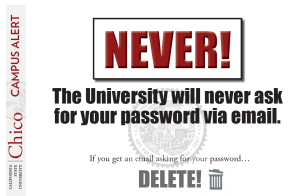 phishing-never
